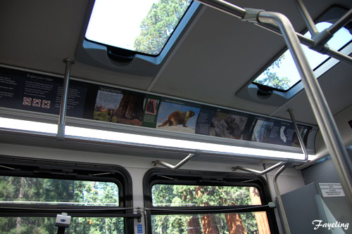 sequoia&kingscanyon_parkshuttle